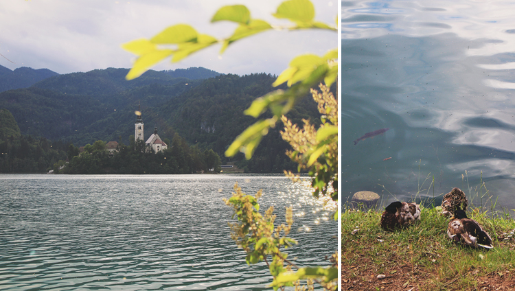 Lake Bled, Slovenia, Bramble and Thorn, Europe, Travel