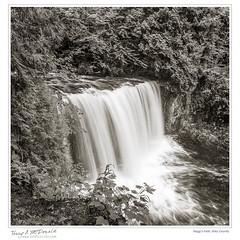 Hogg's Falls, Grey County