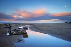 Long Bay Dusk