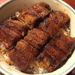 spare ribs(0.0), char siu(0.0), pork ribs(0.0), sirloin steak(0.0), unadon(1.0), food(1.0), dish(1.0), cuisine(1.0),