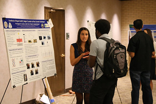 REMRSEC REU 2015 Poster Session and Luncheon