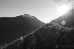 Monte Morcia (Appennino pesarese)
