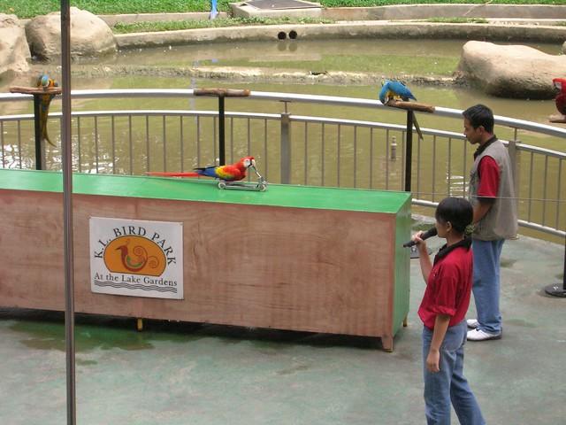 Bird Show at KL Bird Park - Cycling