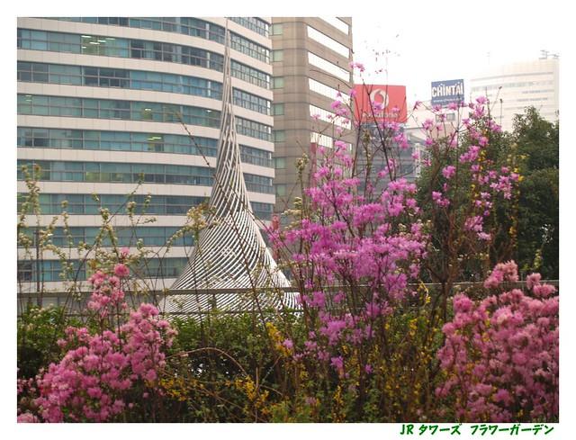Photo:JR Flower garden. 060312 #02 By osanpo