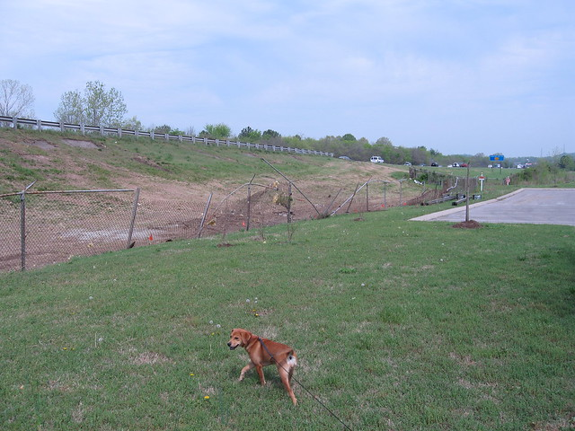 Install Chain Link Fence Clarksville TN | Chain Link Fences