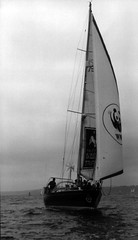 yacht racing, sail, sailboat, sailing, sailboat racing, keelboat, vehicle, sailing, windsports, mast, monochrome photography, watercraft, monochrome, scow, black-and-white, boat,