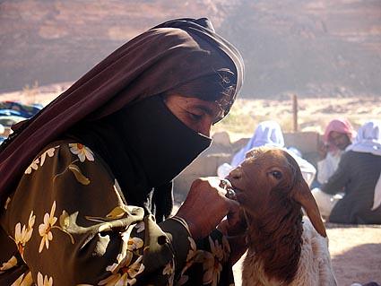 Beoudin, Sinai