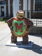 Mighty Turtle of Maryland