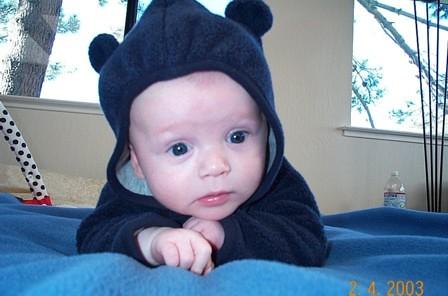 Adorable little bear