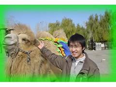 alpaca(0.0), llama(0.0), animal(1.0), mammal(1.0), camel(1.0),