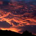 fire in the sky by dawn m. armfield