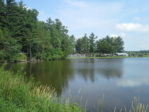 view of lake and park