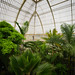 Kew Gardens by Dave Smith