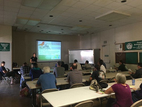 Laura Berthold, with Maui Forest Bird Recovery Project, presenting at the Maui Mauka Conservation Awareness Training for tour guides.