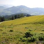 2015_Tirol_100