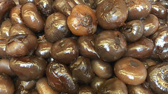 date palm(0.0), plant(0.0), agaricaceae(0.0), shiitake(0.0), chestnut(1.0), vegetable(1.0), shallot(1.0), produce(1.0), food(1.0),