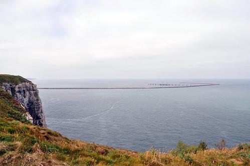 Normandie Cap d'Antifer Ölhafen Le Havre Antifer Port Pétrolier Leuchturm Kühe Möwen Landwirtschaft Falaise Meer Foto Brigitte Stolle 2015