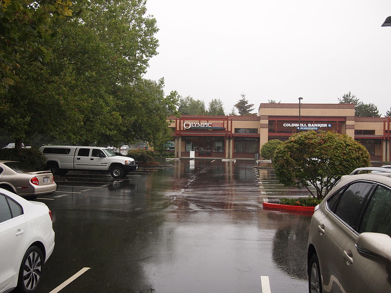 Issaquah Rain: It was pretty rainy in Issaquah