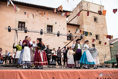 Fira Sant Antoni Muro 2017-71