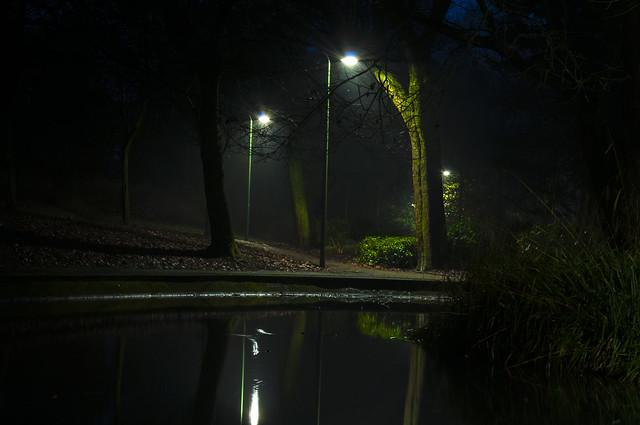 Park pond.