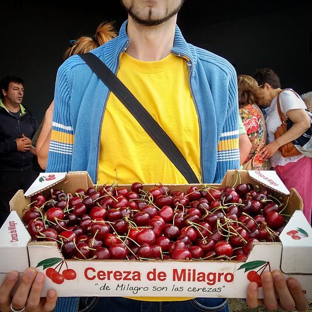 Cerezas de #Milagro. 6.5 kg = 15 €. Ahora toca estar dos semanas comiendo #cerezas a piñón. #8mpx