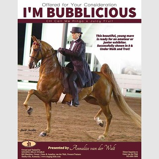 I'm Bubblicious