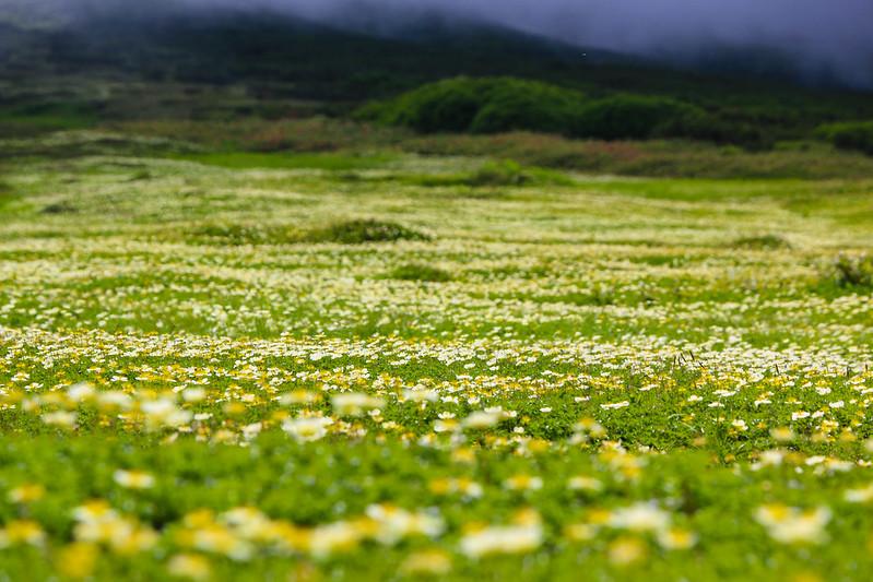 2014-07-20_01200_北海道登山旅行.jpg
