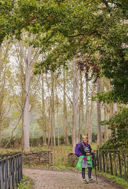 Gillians Camino Pics-98