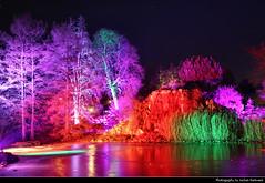 Fairy Woods, Winterlichter, Palmengarten, Frankfurt, Germany