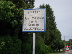 L'ARBRE - Photo of Massignac
