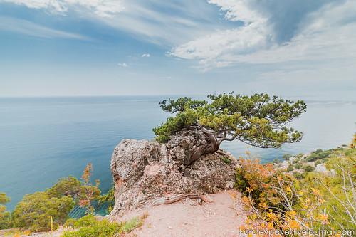 Crimea-1473