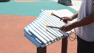 Xylophone at York Park