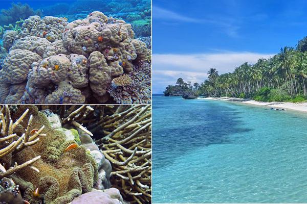 Pulau Mauang 2