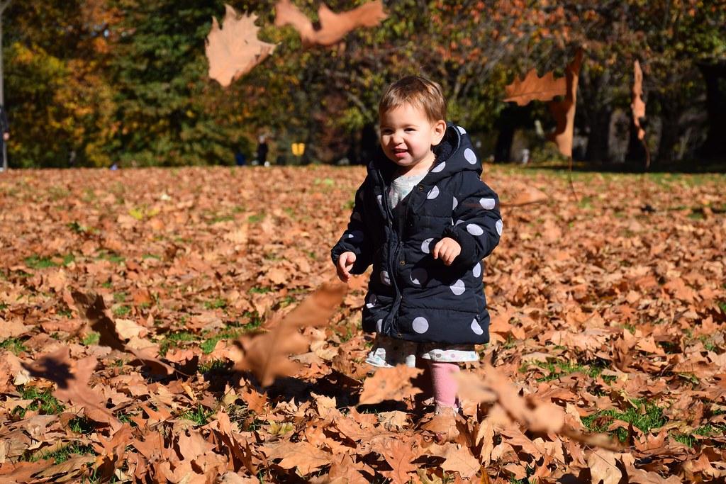 Se lo pasaba genial jugando con las hojas.