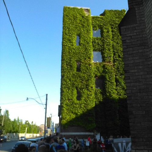 Lineup and ivy #toronto #fringeto #ivy #bathurststreet #annextheatre #thephilandress
