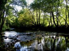 Cae a tarde no río Furelos