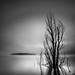 Lake Jindabyne by SoniaMphotography