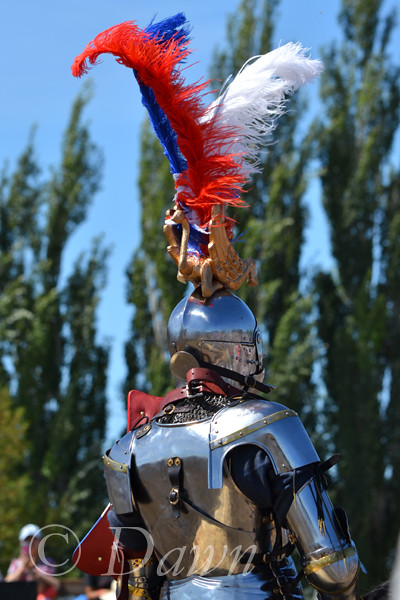 Brooks Medieval Faire 2015
