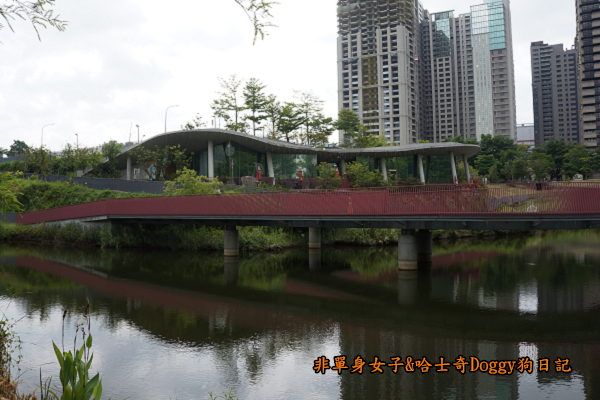 台中秋紅谷01