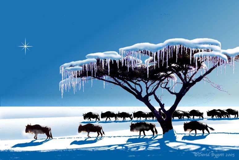 Serengeti Snow