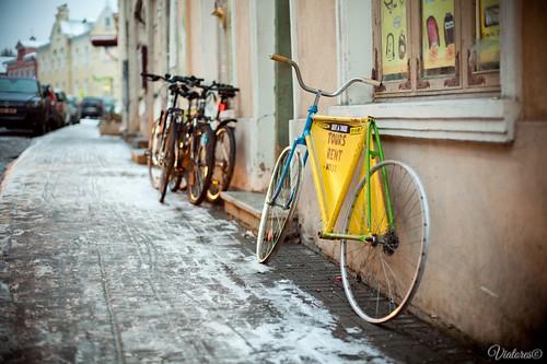 Rent Bikes. Tallinn. Estonia