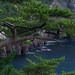 Costal view by 小川 Ogawasan