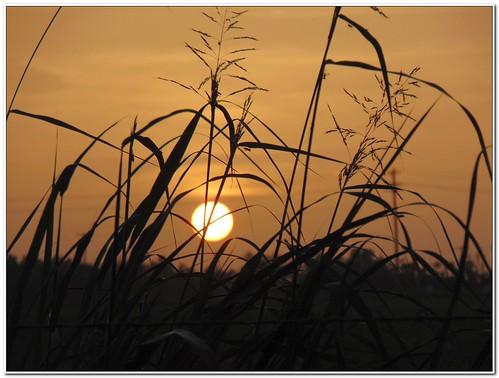 sunset oklahoma sunrise solar westville