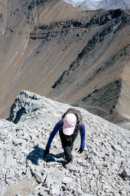 Scrambles - Mt. Tyrwhitt-6