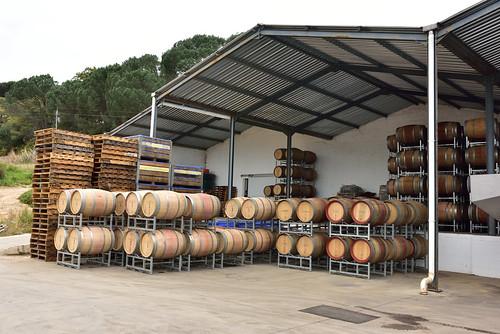 Stellenbosch Wine Route