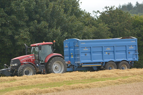 case ih puma 230 cvx tractor broughan engineering mega hispeed trailer cnh casenewholland blarney ain harvest grain2016 grain16 harvest2016 harvest16 corn2016 corn crop tillage crops cereal cereals golden straw dust chaff county cork ireland irish farm farmer farming agri agriculture contractor field ground soil earth work working horse power horsepower hp pull pulling cut cutting knife blade blades machine machinery collect collecting nikon d7100