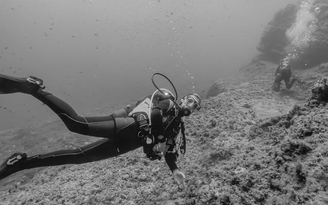 Divergirl in Lampione's island water. Subacquea nelle acque dell' isola di Lampione.