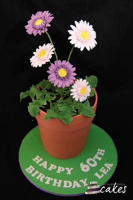 Cake by Eat Sleep Dream Cakes