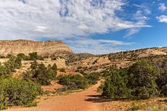 Snapshots from No Thoroughfare Canyon (6-6-15)