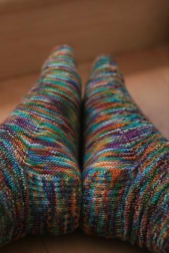 Bertie Botts socks